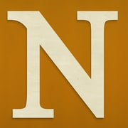 Unfinished Wood Co. Oversized Wood Greek Letter Wall D cor; Nu