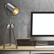 Luxeria Zone Lighting Taylor 26'' Table Lamp