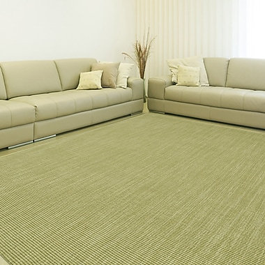 Bayou Breeze Dionne Aloe Solid Rug; 9' x 13'