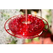 UltimateInnovations Hummingbird Feeder