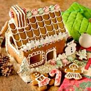 Fox Run Craftsmen 16 Piece Gingerbread House Bake Set
