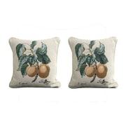 DaDa Bedding Apricot Fruit Elegant Novelty Woven Throw Pillow (Set of 2)