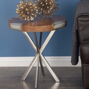 Cole & Grey Teak/Stainless Steel End Table