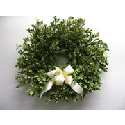 From the Garden 18'' Oregonia Wreath