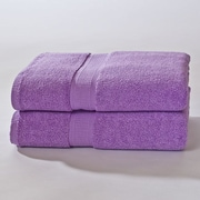 Darby Home Co Bloomberg Bath Sheet (Set of 2); Lilac