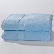 Darby Home Co Bloomberg Bath Sheet (Set of 2); Sky Blue