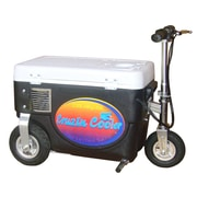 Big Toys 30 Qt. 1000W Scooter Electric Cooler; Black