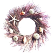 Dried Flowers and Wreaths LLC Pink Feather Grass and Shell 22'' Wreath