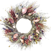 Dried Flowers and Wreaths LLC Clam and Conch 22'' Wreath