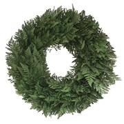 Floral Treasure Alfresco Fern Wreath; 22'' H x 22'' W