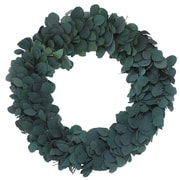 Floral Treasure Preserved Dollar Wreath; 30''