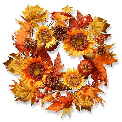 National Tree Co. Harvest 22'' Fabric Wreath WYF078280043642