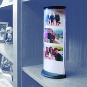 Podia Displays Image Capsule Wall D cor w/ Magnetic Base