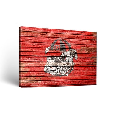 Victory Tailgate NCAA Georgia Bulldogs Weathered Framed Graphic Art on Wrapped Canvas