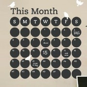SimpleShapes Daily Dot Calendar Chalkboard Wall Decal