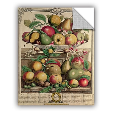 ArtWall Pieter Casteels March From Twelve Months of Fruit Wall Decal; 24'' H x 18'' W x 0.1'' D