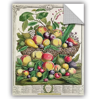 ArtWall Pieter Casteels July From Twelve Months of Fruit Wall Decal; 18'' H x 14'' W x 0.1'' D