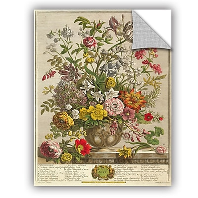 ArtWall Pieter Casteels May From Twelve Months of Flowers Wall Decal; 32'' H x 24'' W x 0.1'' D