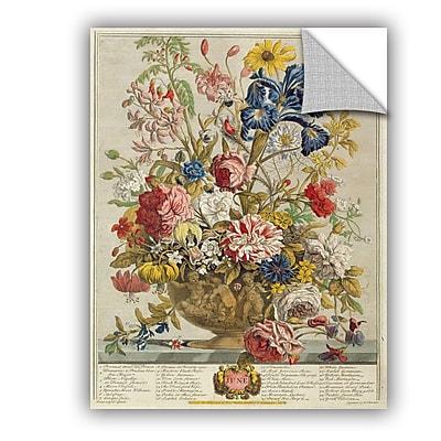 ArtWall Pieter Casteels June From Twelve Months of Flowers Wall Decal; 10'' H x 8'' W x 0.1'' D
