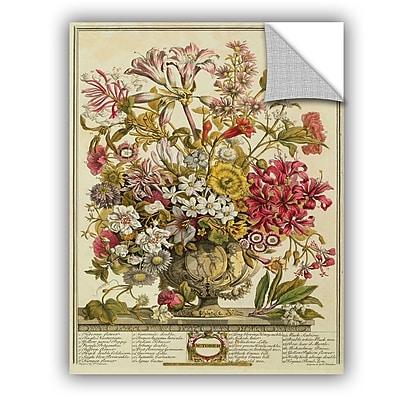 ArtWall Pieter Casteels October From Twelve Months of Flowers Wall Decal; 48'' H x 36'' W x 0.1'' D