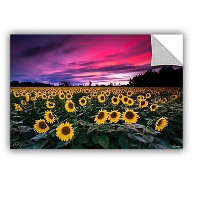 ArtWall Cody York Sunflower Sunset Wall Decal; 12'' H x 18'' W x 0.1'' D