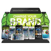 Brightworks Charging Wall Mount Charging Station (WM9)