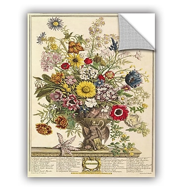 ArtWall Pieter Casteels November From Twelve Months of Flowers Wall Decal; 48'' H x 36'' W x 0.1'' D