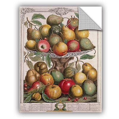 ArtWall Pieter Casteels February From Twelve Months of Fruit Wall Decal; 24'' H x 18'' W x 0.1'' D