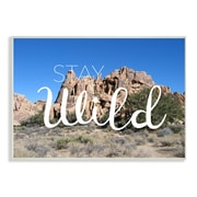 Stupell Industries Stay Wild Desert Landscape Wall Plaque Art