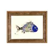FishAye Trading Company Scup Framed Print of Painting