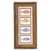FishAye Trading Company 'Fish Collage' by Gyotaku Framed Print of Painting