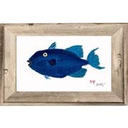 FishAye Trading Company Pompano Framed Print of Painting