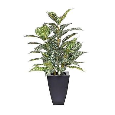 House of Silk Flowers Artificial Zebra Plant in Planter