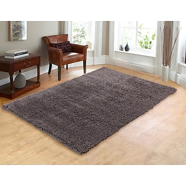Chesapeake Hand-Woven Shag Gray Area Rug; 5' x 7'