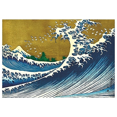 McGaw Graphics Big Wave Graphic Art on Paper; 17.5'' H x 25'' W