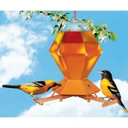 Perky Pet Hex Oriole Hummingbird Feeder w/ Bee Guards