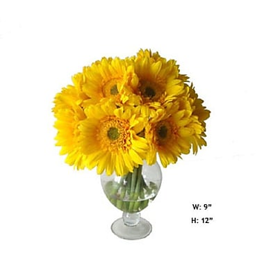 Gold Eagle USA Gerbera Daisies Floral Arrangements in Glass Vase