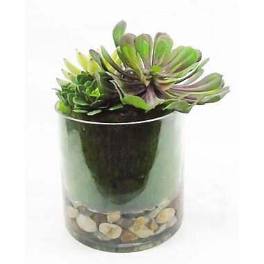 Creative Branch Faux Succulent Plant in Jar