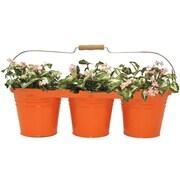 Houston International Galvanized Steel Pot Planter; Tangerine