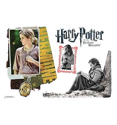 Advanced Graphics Harry Potter 7 Hermione Granger Wall Decal