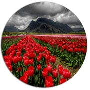 DesignArt Rows of Bright Ruby Red Tulips Photographic Print on Metal; 11'' H x 11'' W x 1'' D
