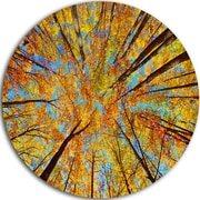 DesignArt 'Tree Tops in Autumn Forest' Photographic Print on Metal; 11'' H x 11'' W x 1'' D