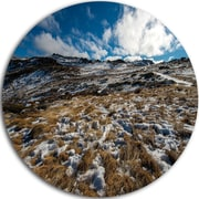 DesignArt 'Top of Kosciuszko National Park' Seashore Photographic Print on Metal