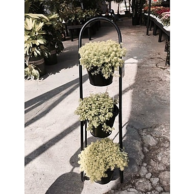 Artscapes Herb Garden Etagere Plant Stand