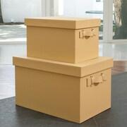 Global Views Handled Rectangular Box (Set of 2); Camel