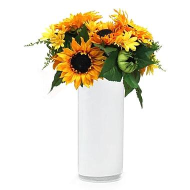 Dalmarko Designs Sunflower Mix in Vase