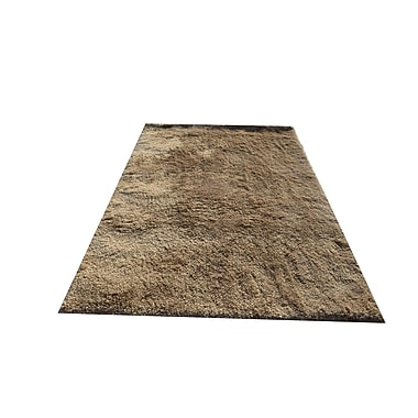 Noble House Ales Beige Area Rug; 5' x 7'