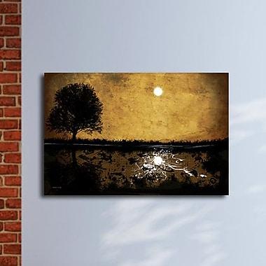 Maxwell Dickson ''Moonlight'' Graphic Art on Canvas; 20'' H x 30'' W