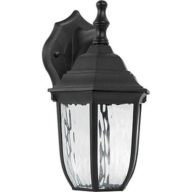 Luminance LED Integrated, Wall Lantern, Black, (F9921-31)