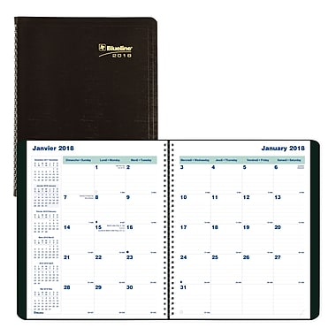 Blueline® 2017/2018 Monthly Planner, 9-1/4